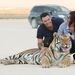 A tigris mintha kicsit unná, de Greenék szemlátomást élvezik