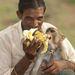Nem csak a cigin, a banánon is osztoznak