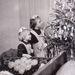 Éva és László, 1950. óta boldog házasok - gyermekeik 1968 karácsonyán