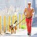 Derek Hough kocog egyet a kutyájával a tévéstúdió és a kutyanapközi között