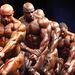 IFBB EVL testépítőbajnokság Prágában