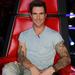 Adam Levine a Voice zsűritagjaként
