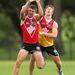 Harrison Marsh és Matthew Dick, a Sydney Swans játékosai