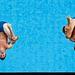Blake Aldridge és Tom Daley műugranak a 2008-as pekingi olimpián