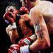 Nathan Cleverley és Courtney Fry bokszmeccse 2009. október 9-én
