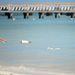 Jesse Metcalfe és barátnője, Cara Santana kivitték a kutyát a strandra Mexikóban