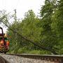A vasúti felsővezetékre borult fa eltávolításán dolgoznak szakemberek és tűzoltók Nagykanizsa közelében.