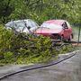 Csongrád mellett a Bokros felé vezető úton egy úttestre dőlt fa miatt két személyautó ütközött össze.