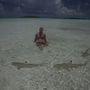 És Polinéziában, néhány cápácskával