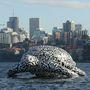Íme Alphie, a bálna méretű teknősbéka.