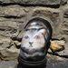 Ez a macska volt az előhírnöke a hódító csapatoknak.