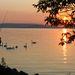Fiú horgászik a tónál, persze, hogy megtetszett a külföldi fotósnak