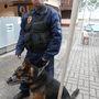 Kontra Béla elmesélte, hogy a kutya egyszer egy téli bevetésen megsérült, megvágta a mancsát, ami egy kutyánál komoly sebesülés.
