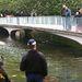 A kacsaúsztato tavat egy rendőrbúvár vizsgálja át épp. A víz van vagy fél méter mély.