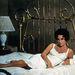 Elizabeth Taylor, Macska a forró bádogtetőn