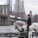 Colin Farrell szomorúan nézi a Brooklyn hídat