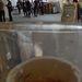 A görög indulók egy sör mögül