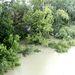 Nem, a fák nem mentek úszni. Ezek a Hajógyári-szigetet szegélyezik. Szombat van, délután, az eső elered.