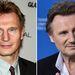 Liam Neeson - Daniel