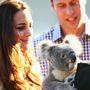 Pózoltak koalával