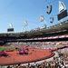 Pistike egy nap úgy döntött, felépíti kis terepasztalán a londoni olimpiai falut.