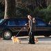 II. Erzsébet kutyái Barack Obama limuzinjához igyekeznek 2009-ben.
