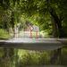 Dunabogdány, árvízveszély.