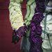 Káposztakabát, alapanyagok: vörés és fehér káposzta, gunnera-óriáslapu, zöldbab és tüskék