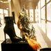 Madaras díszítés és cipő 250 ezerért, szintén Andrássy