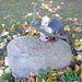 A svéd gyászolók rengeteg mindent visznek ki a sírokra: itt egy szép példa arra, hogy mennyi mindent