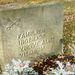 Érdekes szimbólum egy családi síron