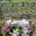 Virágok egy egészen különleges sírkövön, ami inkább már síremlék, mint sírkő