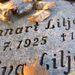 Ezen a sírkövön bronz verebek csipegetnek
