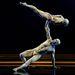 A La Vision nevű akrobataduó a Supertalent fináléjában